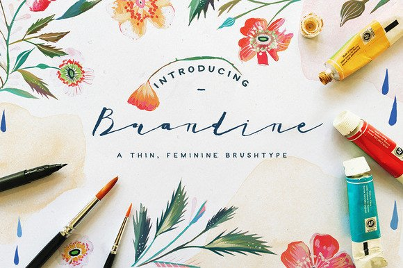 Print on Demand: Brandine Script & Handwritten Font By Blue Robin Design Shop