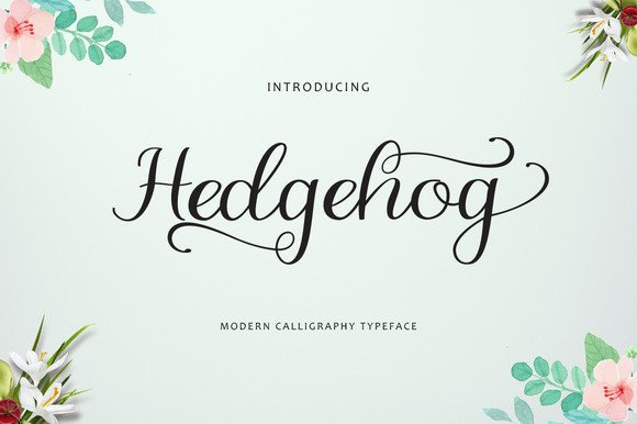 Print on Demand: Hedgehog Script & Handwritten Font By Polem - Image 1