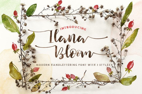 Print on Demand: Ilana Bloom Script & Handwritten Font By Blue Robin Design Shop