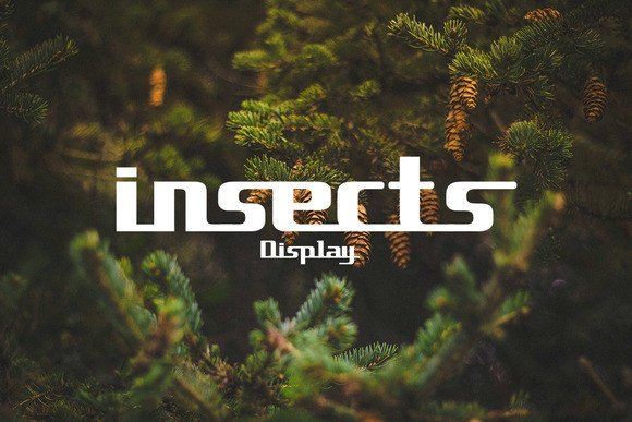 Insects Font By Ijem RockArt