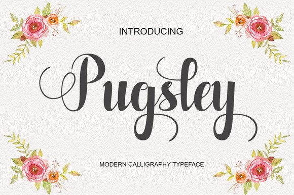 Print on Demand: Pugsley Script & Handwritten Font By Polem - Image 1