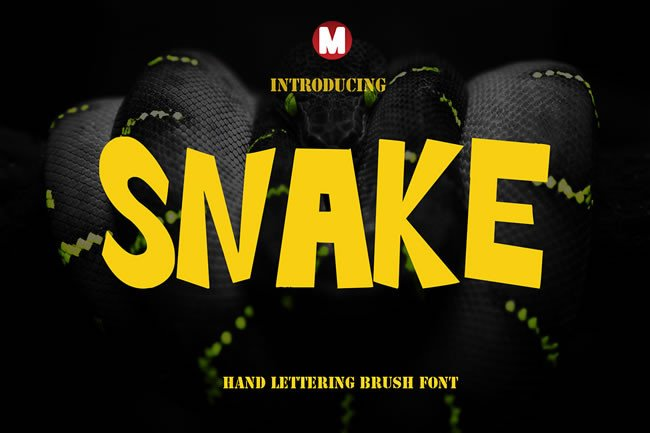 Print on Demand: Snake Display Font By Only The Originals