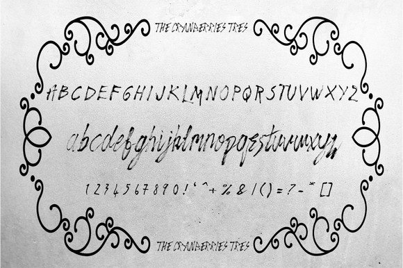 Print on Demand: The Cranberries Script & Handwritten Font By Only The Originals - Image 7