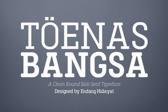 Print on Demand: Toenas Bangsa Family - Light Slab Serif Font By Bang Kumis Typefoundry - Image 1