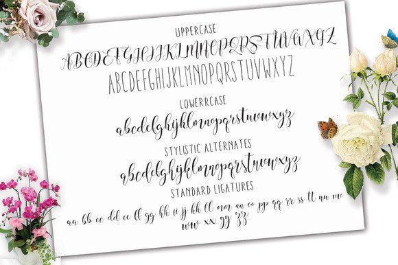 Print on Demand: Will Shering Script & Handwritten Font By Moriztype - Image 10