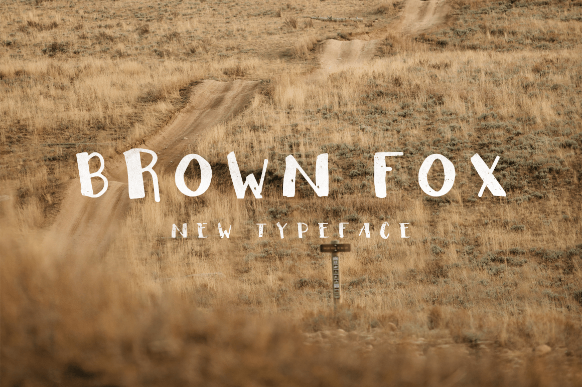 Print on Demand: Brown Fox Manuscrita Fuente Por Noe Araujo