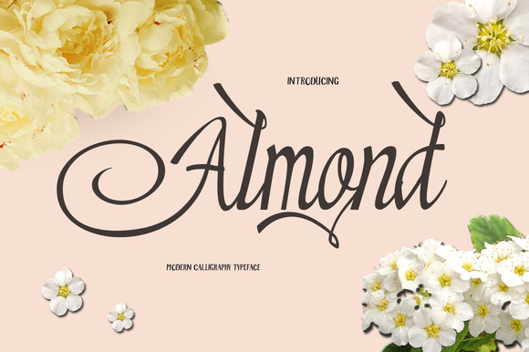 Print on Demand: Almond Script & Handwritten Font By Microcreative
