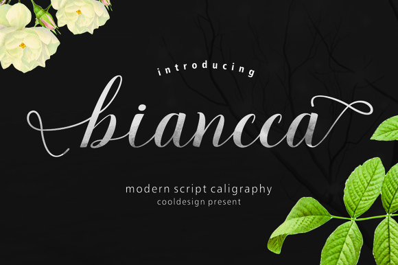 Print on Demand: Biancca Script Script & Handwritten Font By Cooldesignlab
