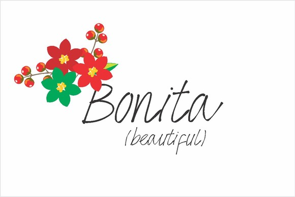 Bonita Font By Carolina Mejia