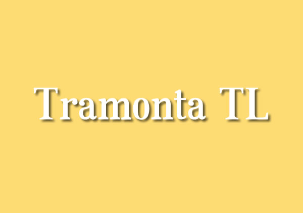 Print on Demand: Tramonta TL Serif Font By Juan Casco