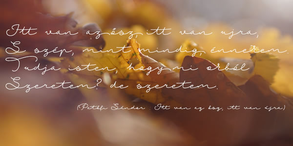 Autumn Chant Font By Roland Hüse Image 3