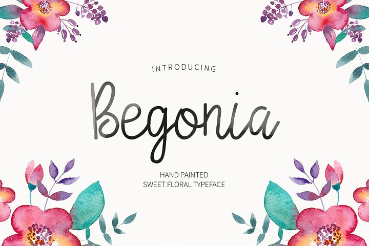 Print on Demand: Begonia Script & Handwritten Font By Dmitrii Chirkov