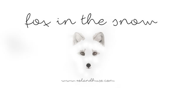 Print on Demand: Fox in the Snow Script & Handwritten Font By Roland Hüse Design