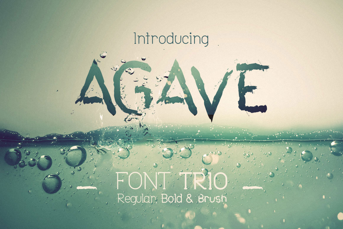 Print on Demand: Agave Font Trio Display Font By DesignSomething