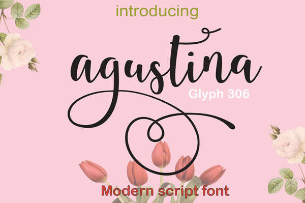 Agustina Script & Handwritten Font By Cooldesignlab