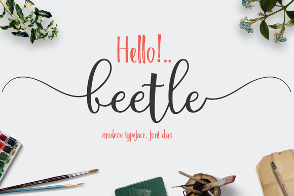 Print on Demand: Beetle Script & Handwritten Font By Groens Studio