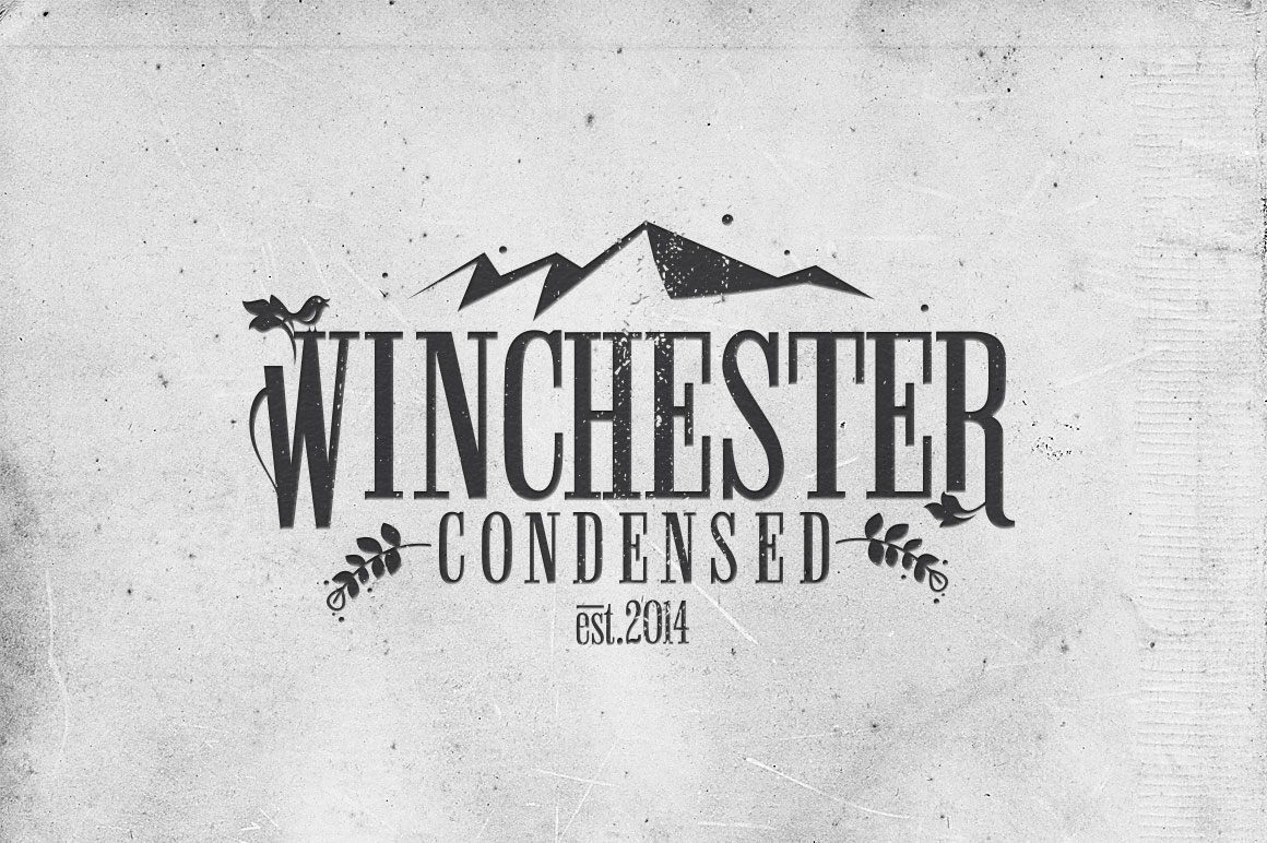 Winchester Condensed Font By DesignSomething Image 3