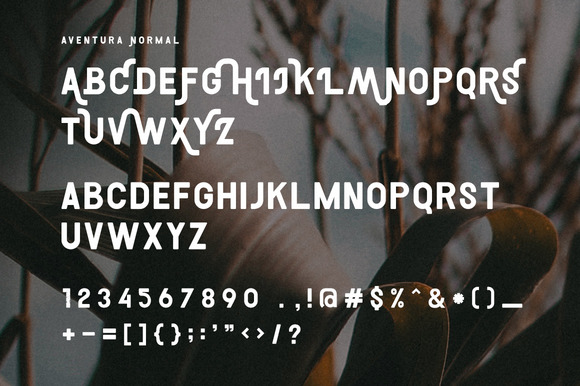 Print on Demand: Aventura Display Font By Ease Type - Image 4