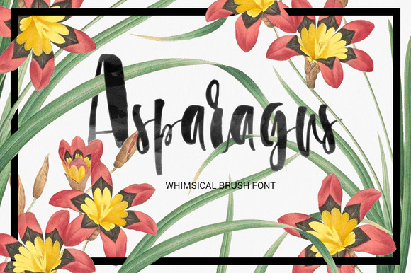 Print on Demand: Asparagus Script & Handwritten Font By Favete Art