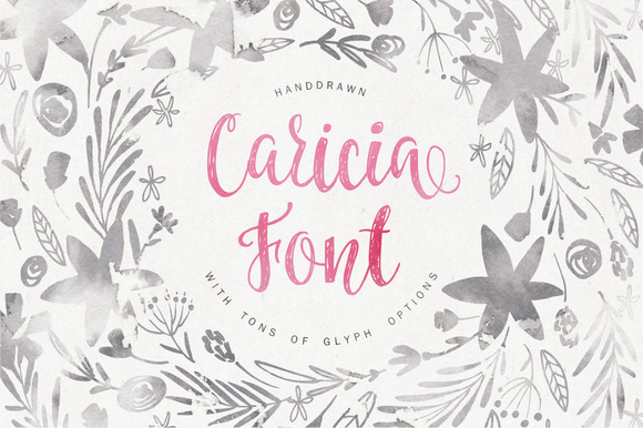 Print on Demand: Caricia Script & Handwritten Font By Favete Art