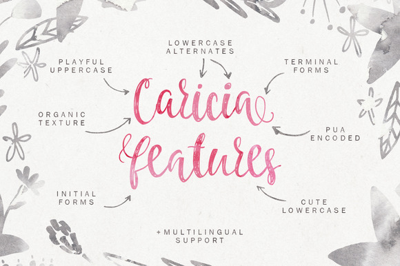 Caricia Font By Favete Art Image 2