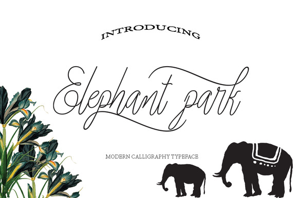 Print on Demand: Elephant Park Script & Handwritten Font By Danti