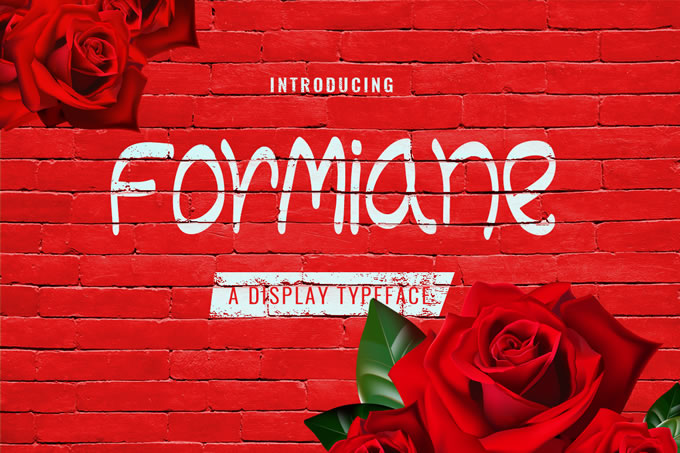 Formiane Display Font By Contour Fonts