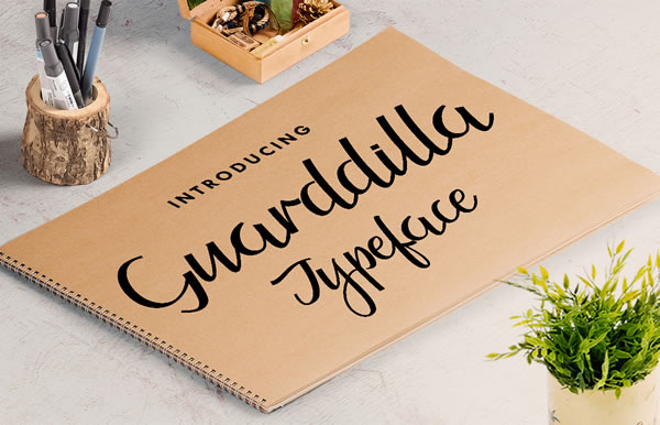 Print on Demand: Guarddilla Script & Handwritten Font By Stipline Studios