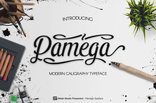 Print on Demand: Pamega Script Script & Handwritten Font By Aktab Studio