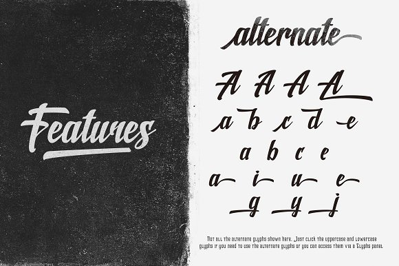 Print on Demand: Shine Script & Handwritten Font By Rvq Type Foundry - Image 4