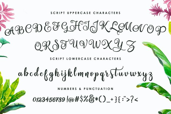Print on Demand: Amastery Script & Handwritten Font By BlackCatsMedia - Image 3