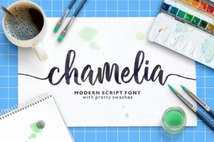 chamelia-script-by-area-type-1