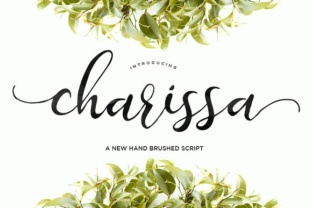 charissa-script-by-area-type-1
