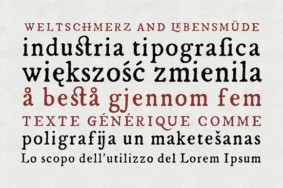 Print on Demand: Esther Serif Font By Hederae Type Foundry - Image 4