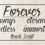 forever-brush-script-by-pedro-teixeira-5