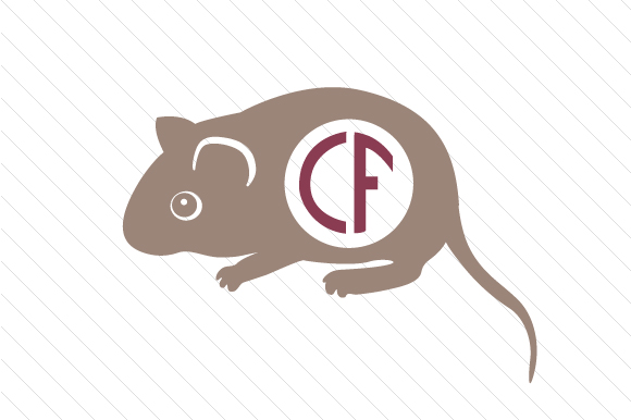 Download Free Mouse Monogram Frame Svg Cut File By Creative Fabrica Crafts for Cricut Explore, Silhouette and other cutting machines.