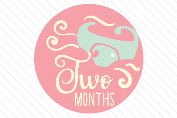 Babies First Year - Set of Monthly Baby Stickers Kids Craft Cut File By Creative Fabrica Crafts - Image 3