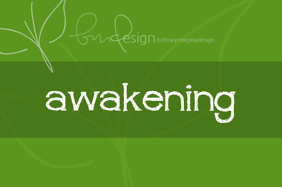 Print on Demand: Awakening Decorative Font By brittneymurphydesign
