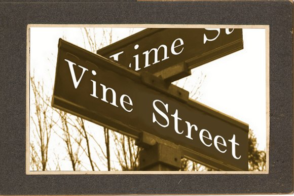 Print on Demand: Vine Street Serif Font By Proportional Lime