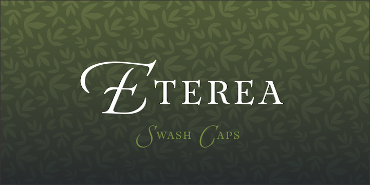 Eterea Family Font By Corradine Fonts Image 4