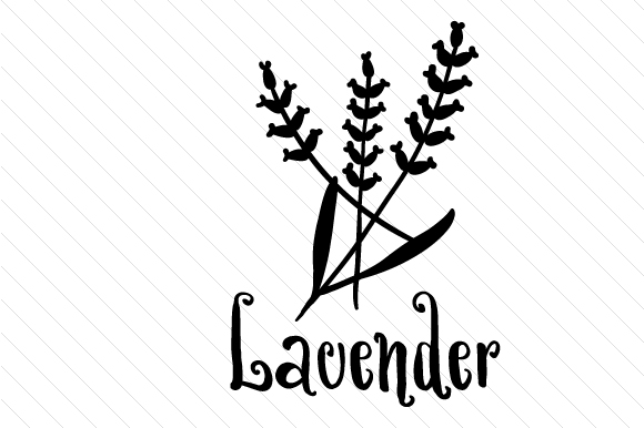 Download Free Lavender Svg Cut File By Creative Fabrica Crafts Creative Fabrica for Cricut Explore, Silhouette and other cutting machines.