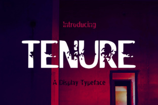 Tenure by Seemly Fonts