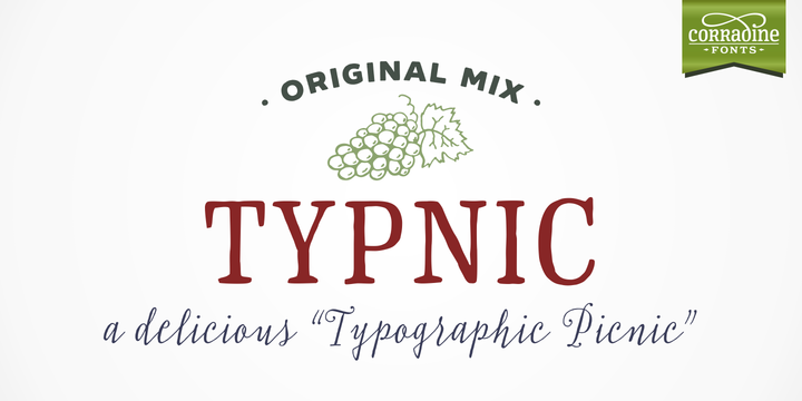 Print on Demand: Typnic Family Sans Serif Font By Corradine Fonts
