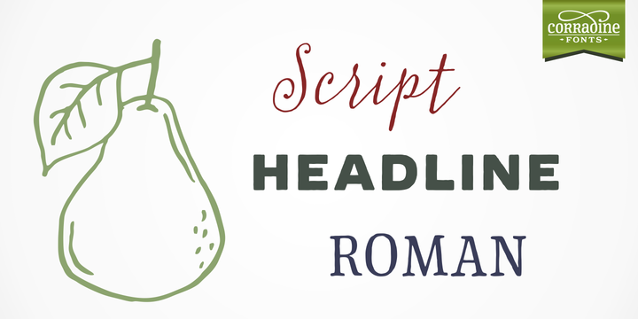 Print on Demand: Typnic Family Sans Serif Font By Corradine Fonts - Image 2