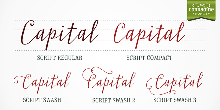 Print on Demand: Typnic Family Sans Serif Font By Corradine Fonts - Image 4