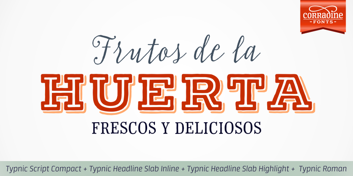 Print on Demand: Typnic Headline Family Slab Serif Font By Corradine Fonts - Image 6