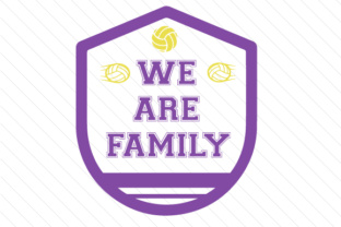 We are family volleyball