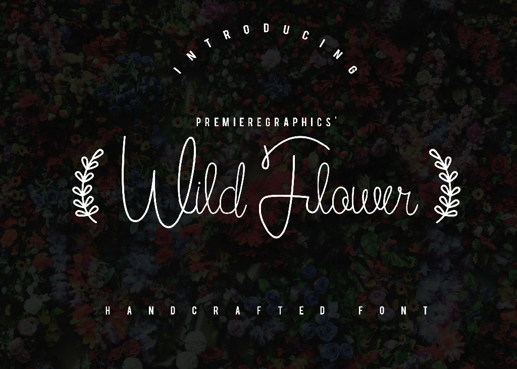 Print on Demand: Wild Flower Script & Handwritten Font By Ryn Pojas