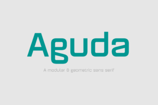 Aguda Family Font By Graviton Font Foundry