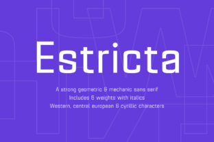 Estricta Family Font By Graviton Font Foundry